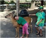 Deer Park As Presented By Meadowbrook Resort & Dells Packages In Wisconsin Dells