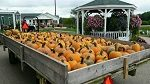 Country Bumpkin Farm Market As Presented By Meadowbrook Resort & Dells Packages In Wisconsin Dells